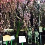 弥次さん喜多さんの像 京都・観光文化検定三級に楽々合格