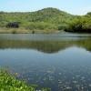 氷河時代の植物など、国の天然記念物指定の動植物が生息する池は?京都検定三級過去問!