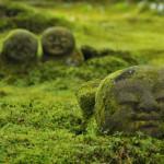 聚碧園、有清園などの庭園で知られる寺院は?京都検定三級過去問!