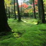 西方寺の庭を作庭したのは?京都検定三級過去問!
