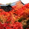 境内にある通天橋一帯が紅葉の名所として知られる寺院は?京都検定3級合格ガイド!